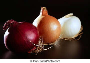 Three colorful different onion in varied colors over black
