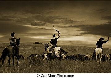 Three cowboys drive herd of horses , toning, vignetting