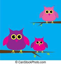 Three cute owls and cloud. Card.