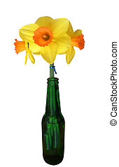 Three Daffodils in a Green Bottle