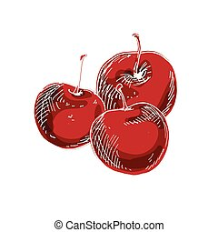 Three delicious ripe cherries isolated on white background. Vector illustration.