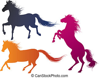 horse - three detailed horse