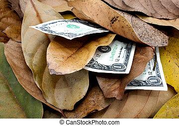Three Dollar Bills In Pile Of Autumn Leaves