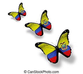 Three Ecuador flag butterflies, isolated on white