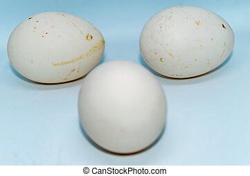 Three eggs isolated over a white background.