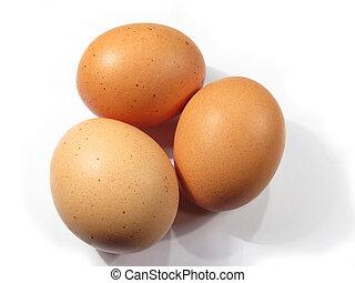 Three eggs - Three brown eggs isolated win white