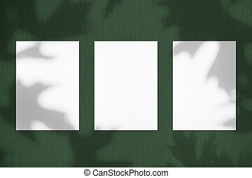 Three empty white vertical rectangle poster mockups with maple tree leaves shadows
