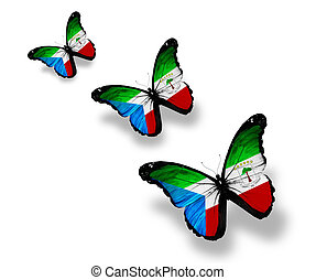 Three Equatorial Guinea flag butterflies, isolated on white