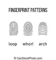 Three fingerprint types on white background.