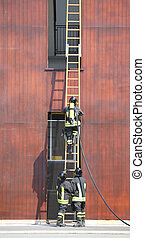 three firefighters in the fire brigade with a long staircase