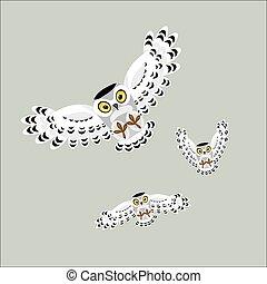 Three flying polar owls