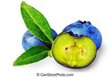 Three fresh blueberry isolated on white background.