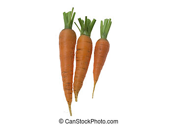 Three fresh raw carrots on the white background