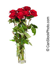 Three fresh red roses over white background