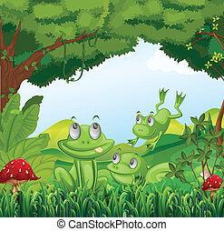 Three frogs at the forest