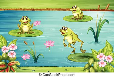 Three frogs living in the pond