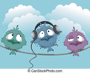 Three funny birds