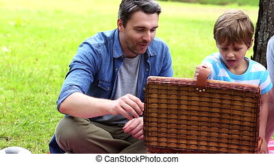 Three generations of men having a picnic on a sunny day