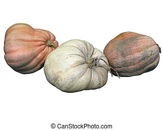 Three giant pumpkins isolated on white