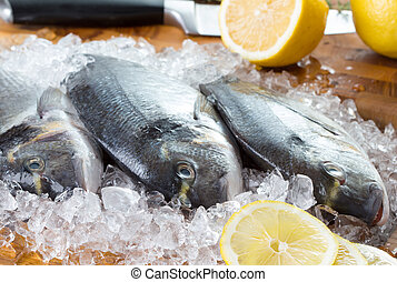 three gilt-head fish and lemonon with ice on wooden plate