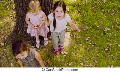 Three girls playing in the park on the grass near the tree.