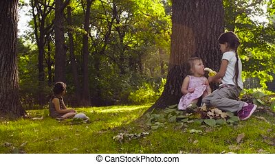 Three girls sitting in the park on the grass among the...