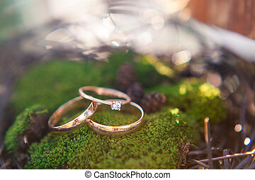 Three golden wedding rings on the moss background. Macro shot.