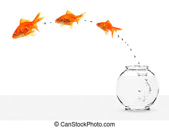 three goldfishes escaping from fishbowl isolated on white background