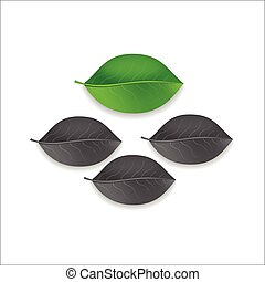 three gray and one green individuality leaf tree