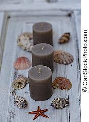 Three gray candles with seashells