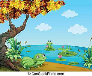 Three green frogs at the pond - Illustration of three green...