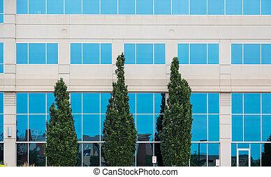 Three Green Trees by Blue Windows