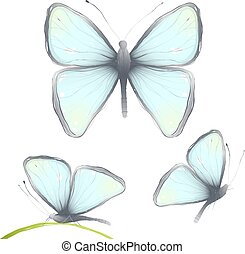 Three Hand Drawn Delicate Butterfy - Blue butterflies flying...