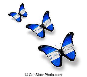 Three Honduras flag butterflies, isolated on white
