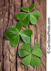 Three irish clovers on a vintage wood background
