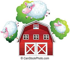 Three jumping sheeps