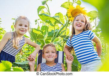 Three kids having fun among sunflowers