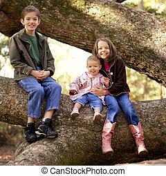 three kids in tree - three children playing in large tree