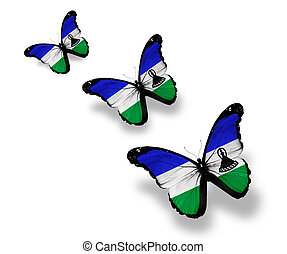 Three Kingdom of Lesotho flag butterflies, isolated on white