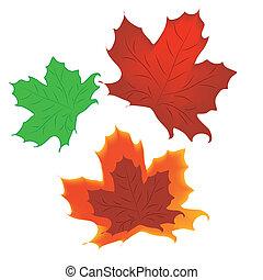 three leafs