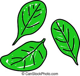 three leaves of spinach isolated on white drawn in toddler art style