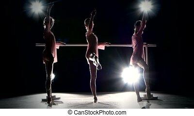 Three little ballet girls in tutu posing at ballet barre -...