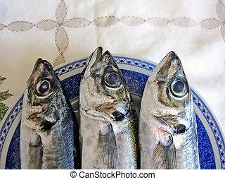 three mackerel fish
