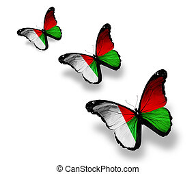 Three Madagascar flag butterflies, isolated on white