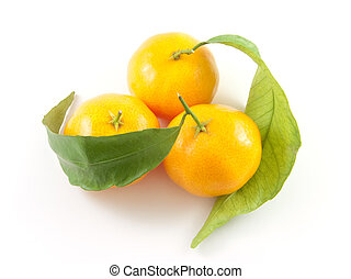 Three mandarins with leafs isolated on white background