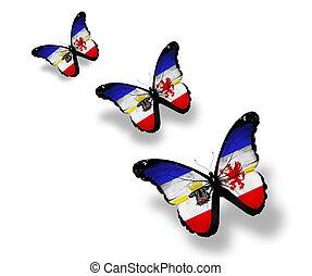 Three Mecklenburg-Vorpommern flag butterflies, isolated on...