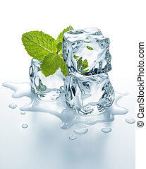 ice cubes with mint - three melting ice cubes with mint ...