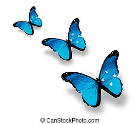Three Micronesia flag butterflies, isolated on white
