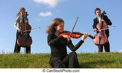 three musicians plays violin and violoncellos on meadow