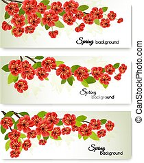 Three nature spring banners with blossom of sakura. Vector.